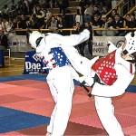 taekwondo 2